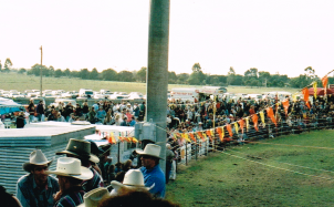 View from the grandstand